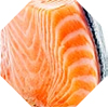 NZ King salmon
